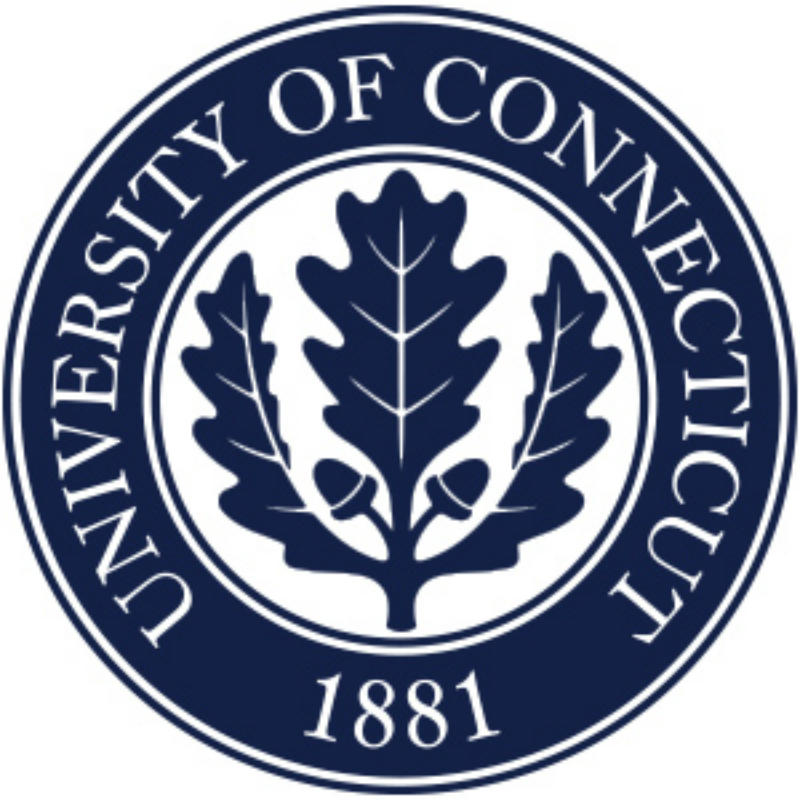 university of connecticut logo design