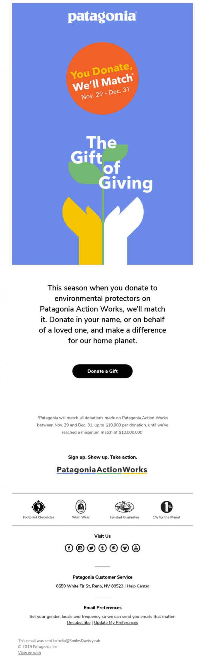 patagonia newsletter